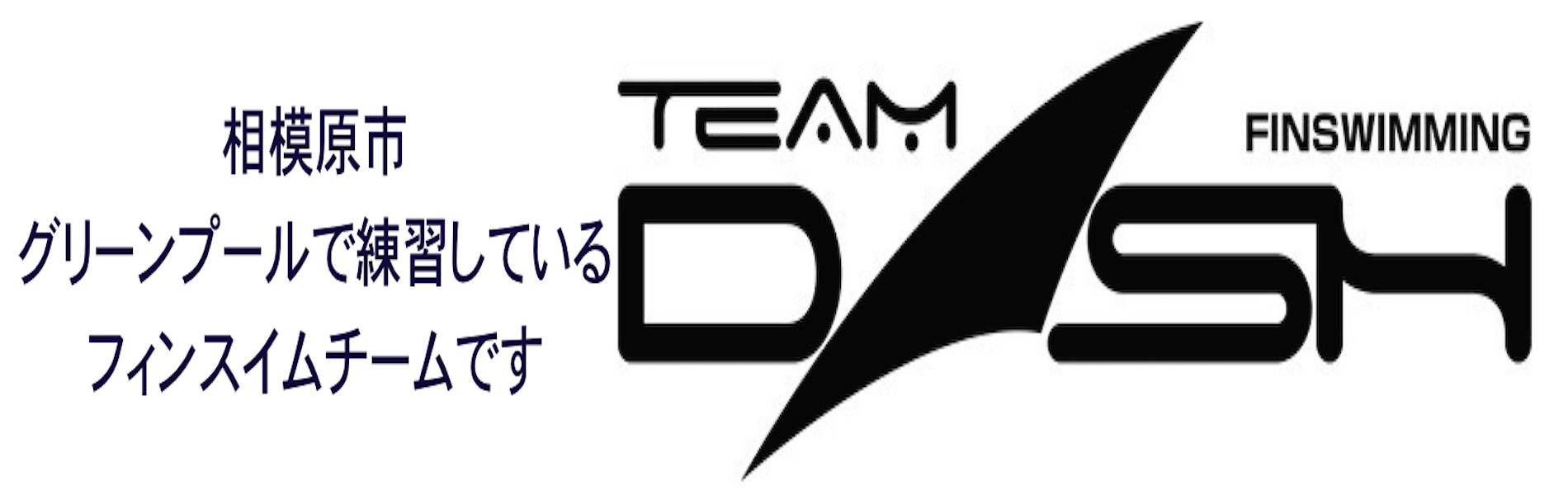 teamdash-logo